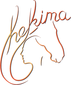 hekima training logo
