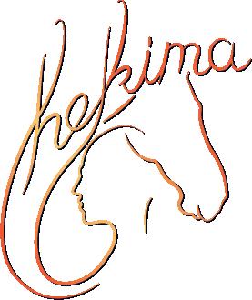 hekima training logo